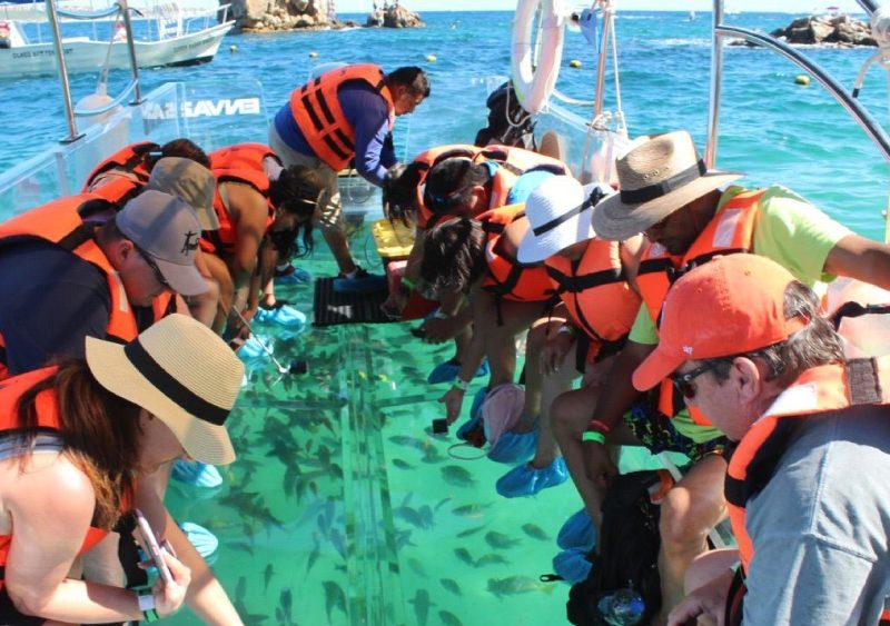 Enva Tours Clear Boat