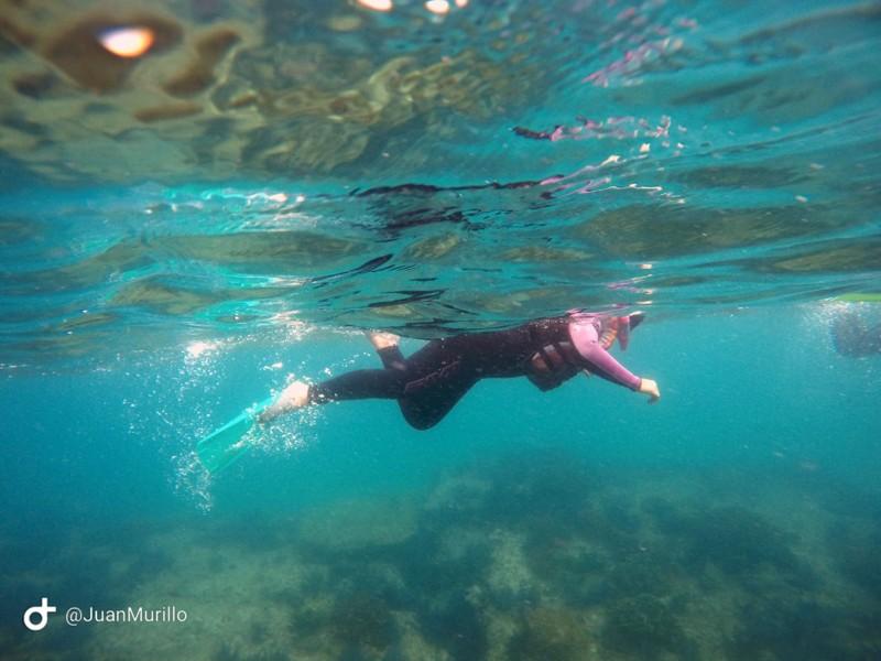 Cabo Pulmo Travel Snorkel