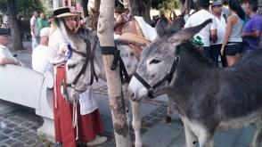 Romería de los Burros - San Benito Abad- La Laguna 2015 (9)