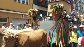 loscalados-romería-san-benito-abad-2015-la-laguna (12)