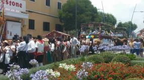 loscalados-romería-san-benito-abad-2015-la-laguna (28)