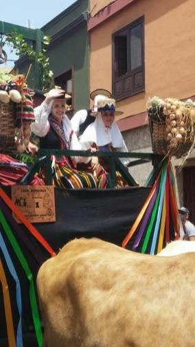 loscalados-romería-san-benito-abad-2015-la-laguna (4)