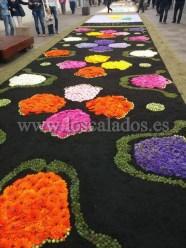 www.loscalados.es - Corpus Christi La Laguna 2015 (5)
