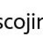 cojin patrulla canina