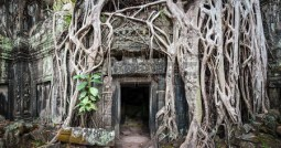 29488563-angkor-wat-cambodia-ta-prom-khmer-ancient-buddhist-temple-in-jungle-forest-famous-landmark-place-of-