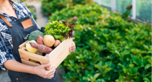 10 Ways to become a more sustainable eater