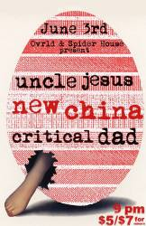 New-China-Spider-House