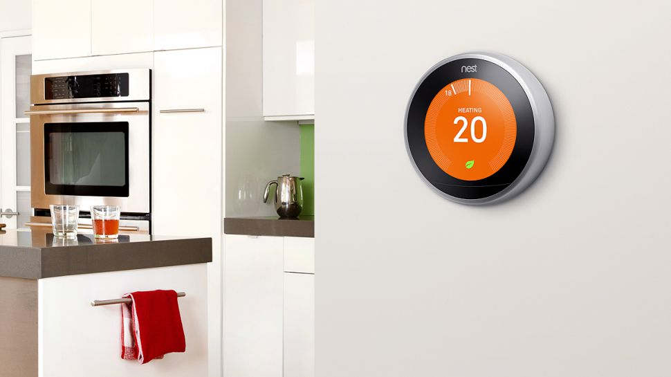 review of nest home