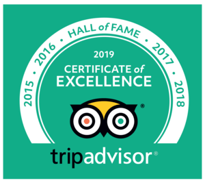 Trip advisor certificate of excellence for 2019
