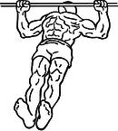 Body-row