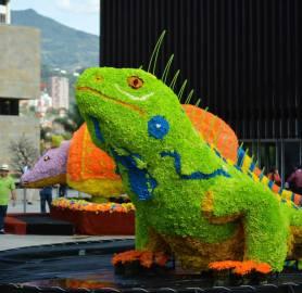 Plaza con todo tipo de fauna hecha con flores, aquí una especie de Lagarto Juancho con un armadillo de fondo. Photo by Casey French