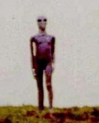 En los años 70 u 80 fue publicado la imagen de este extraterrestre que coincide con la imagen del Visitante de Bulgaria.