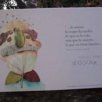 """La Biblioteca Mario Moreno de Buenos Aires, """"la vida, no tiene límites"""""""