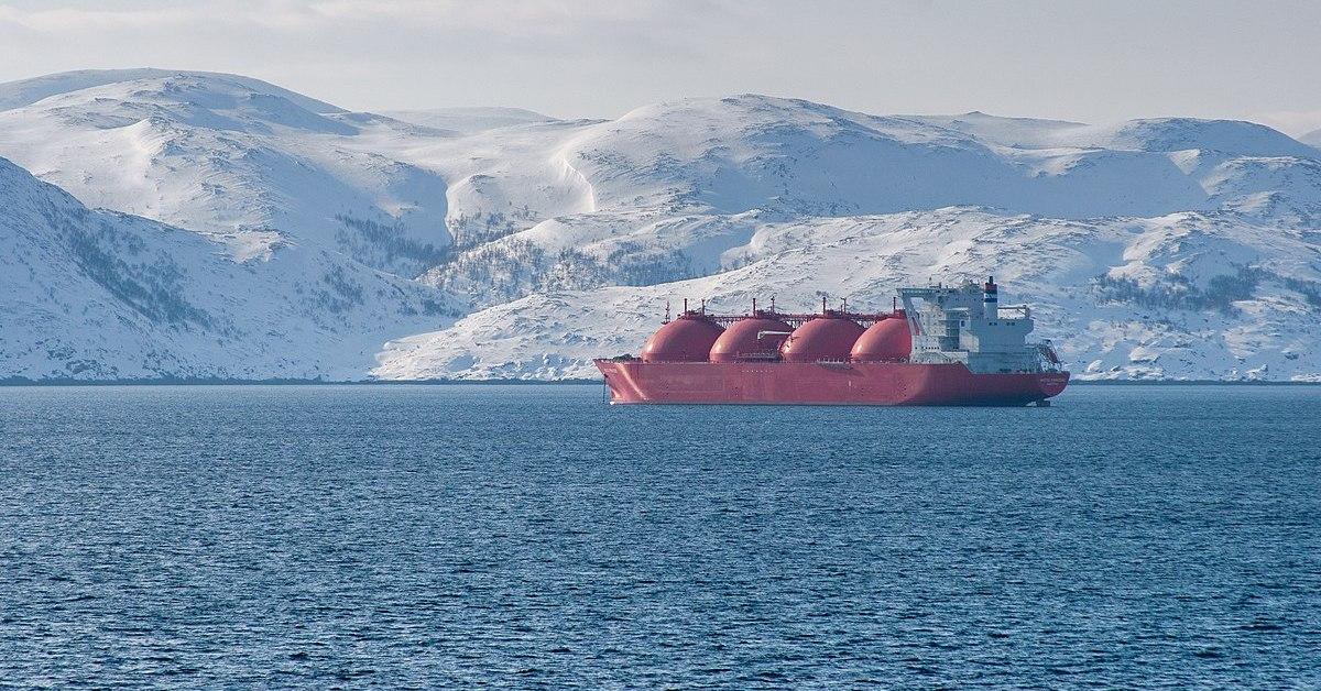 antartico e artico