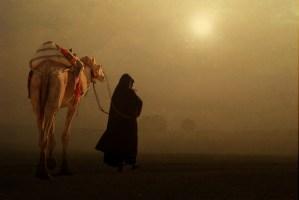 Tribalismo nella Penisola Arabica di oggi