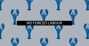 Il 5° fra tutti i diritti dell'UE: la proibizione del lavoro forzato e il contributo della Carta
