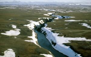"""""""L'ambientalismo incerto"""" della Russia nell'Artico: una minaccia all'economia e all'ecosistema"""