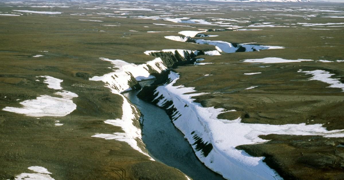 Artico in Russia