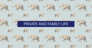 Il 7° fra tutti i diritti dell'UE: il rispetto della vita privata e il contributo della Carta