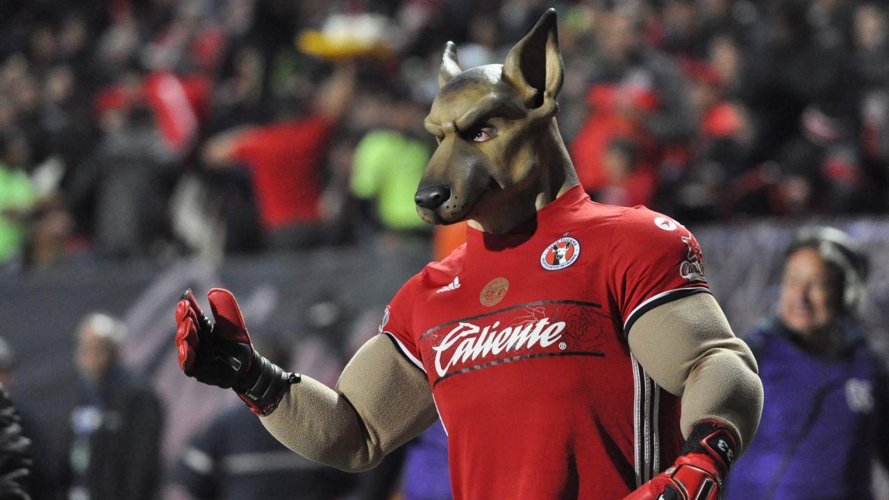 Mascotas, Xolos, Tijuana, Xolo Mayor, Monterrey, Rayados, Monty, reto, baile, previo, partido, Liga MX