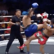 Muay Thai Nocaut Mortal Kombat Videojuego Patada Voladora