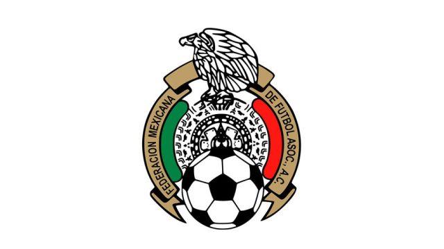 Torneos Largos Liga Premier División Futbol Mexicano Los Pleyers