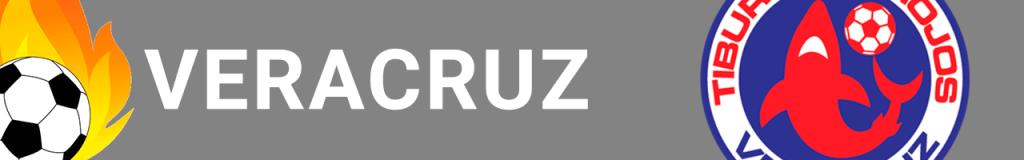 Banner Veracruz