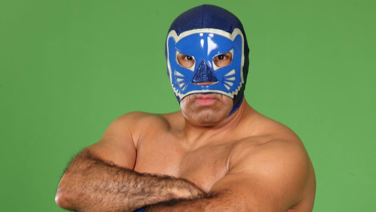 blue panther estatura cmll lucha libre místico