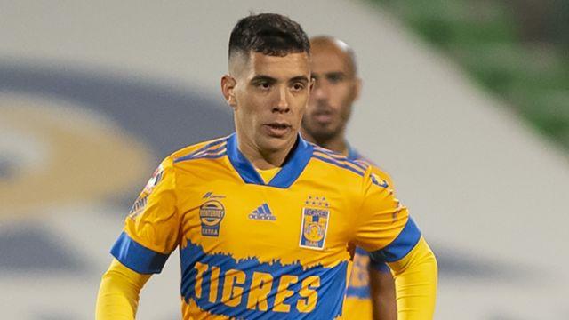 Tigres Leo Fernández planes Miguel Herrera Apertura 2021