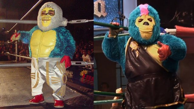 kemonito luchador cmll mascaras arena mexico
