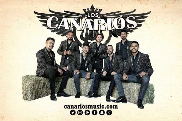 Canarios En Mexico