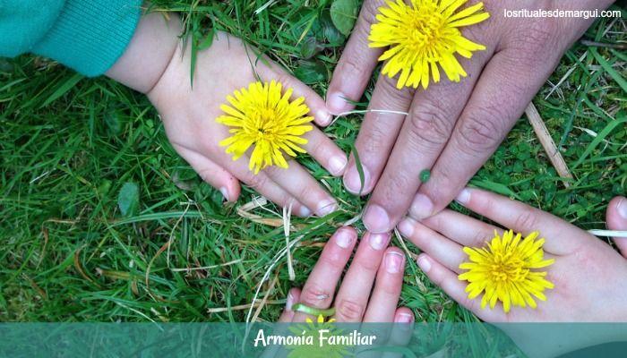 Para Conseguir la Armonía Familiar en 3 Pasos