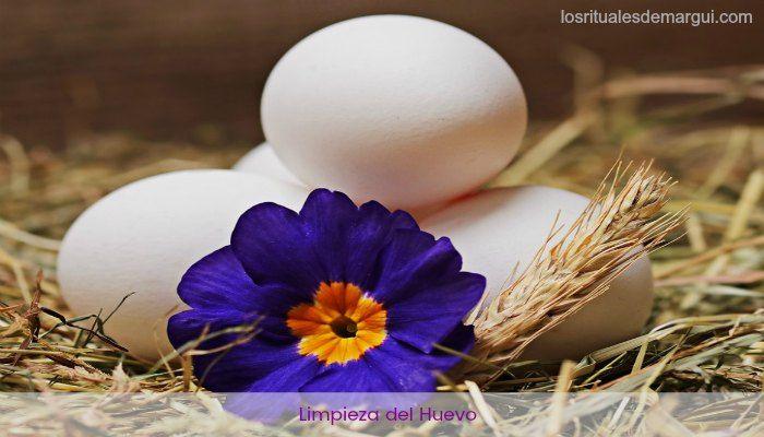 Limpieza del Huevo