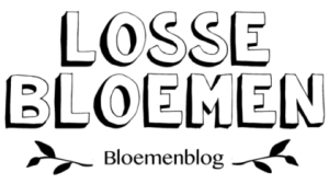 lossebloemenblog logo