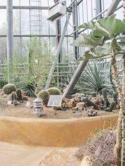 Amsterdam botanische tuin hotspot