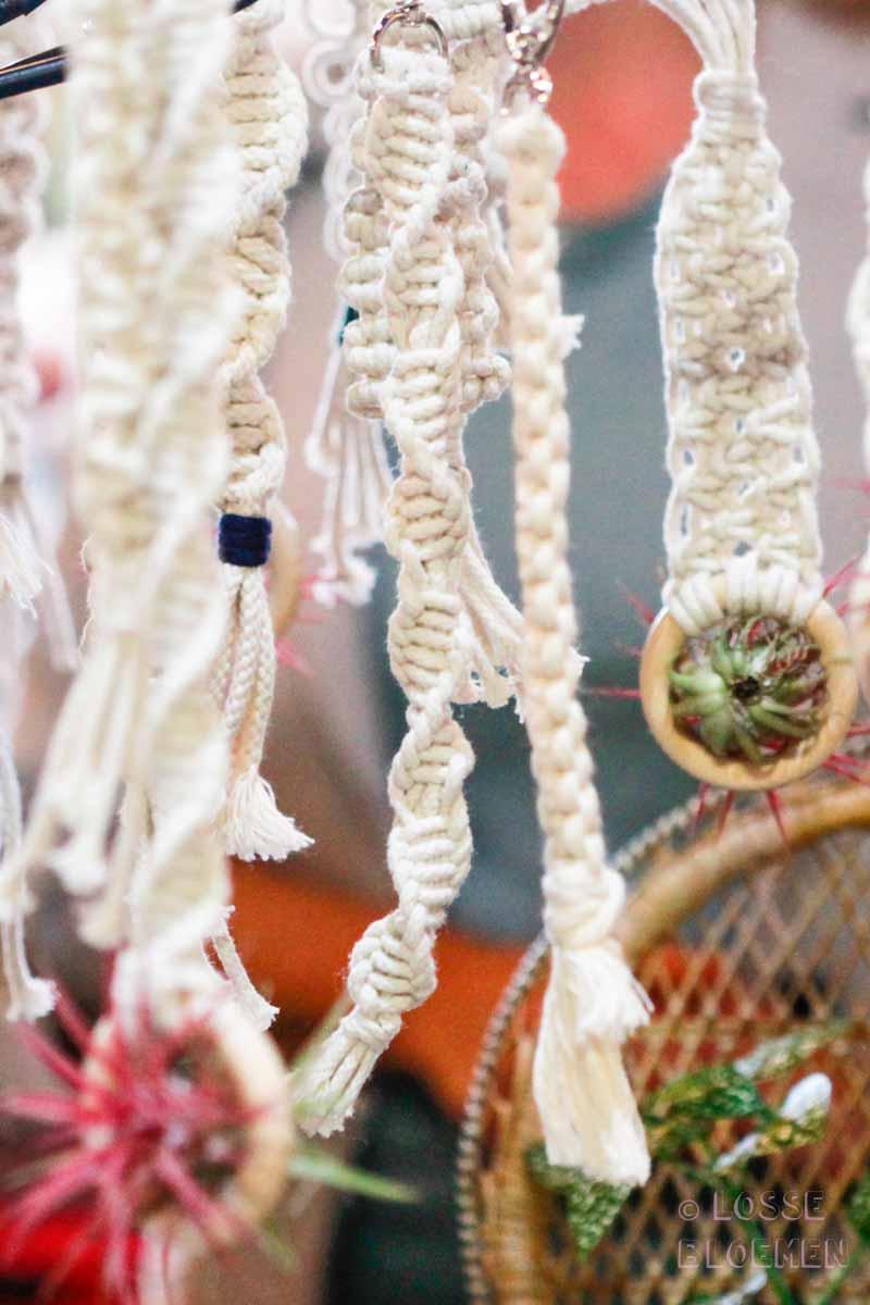 swanmarket van nelle fabriek Rotterdam peacockandpeony macramé hangers met luchtplantjes