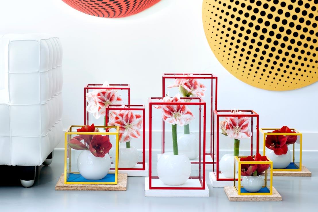 Amaryllis op lossebloemen.nl free printable amaryllis losse bloemen mooiwatbloemendoen