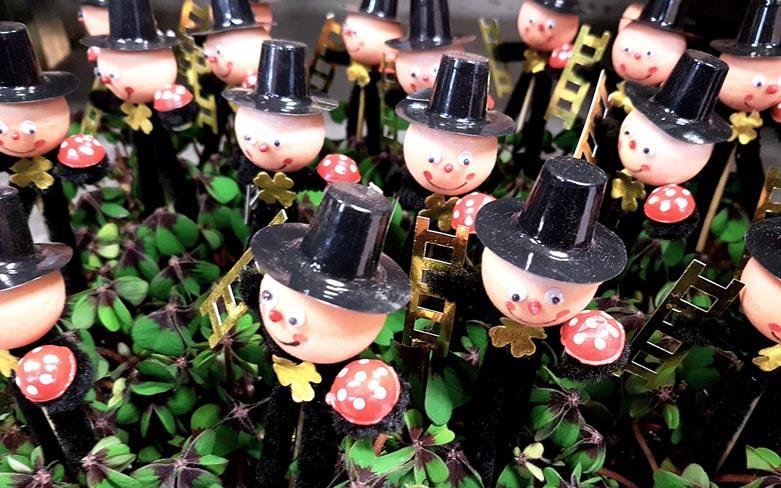 klavertje-vier-gelukspoppetjes-welke-bloemen-en-planten-staan-voor-geluk--bloem-betekenis-geluk-losse-bloemen-blog