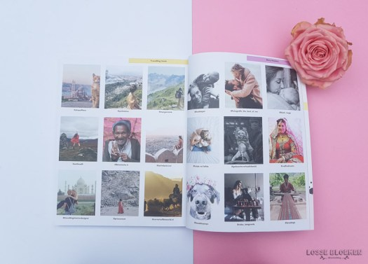 Lossebloemen.nl blog bloemen - losse bloemen instagram grammiemagazine instagram uitleg