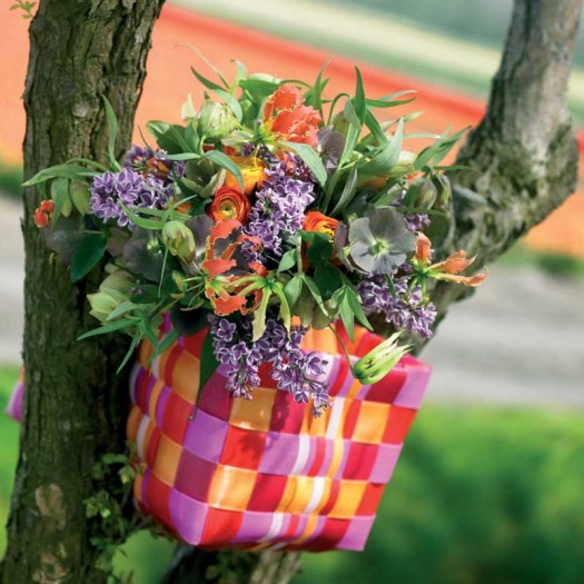 Oranje koningsdagbloemen foto- mooiwatbloemendoen.nl op losse bloemen blog Gloriosa