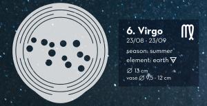constellation virgo house of thol horoscoop