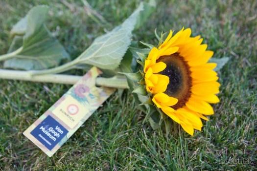 Zonnebloemen van gogh museum zonnebloem sunrichvangogh celebrate summer takiieurope - foto's lossebloemen.nl
