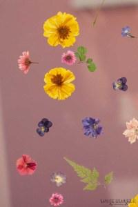 TOKKETOK Showup 2018 Najaar - foto's - lossebloemen