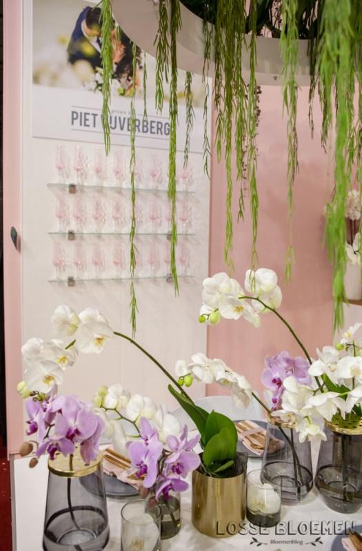Lossebloemen trade fair Royalfloaholland Aalsmeer 9 nov 2018 - bloemenblog lossebloemen.nl_-30