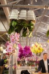 Lossebloemen trade fair Royalfloaholland Aalsmeer 9 nov 2018 - bloemenblog lossebloemen.nl