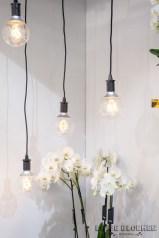 VW orchidee zwart wit Lossebloemen trade fair Royalfloaholland Aalsmeer 9 nov 2018 - bloemenblog lossebloemen.nl