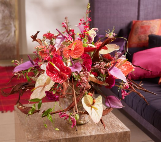Anthurium kleurrijk snijbloem close up beeld: mooiwatbloemendoen.nl