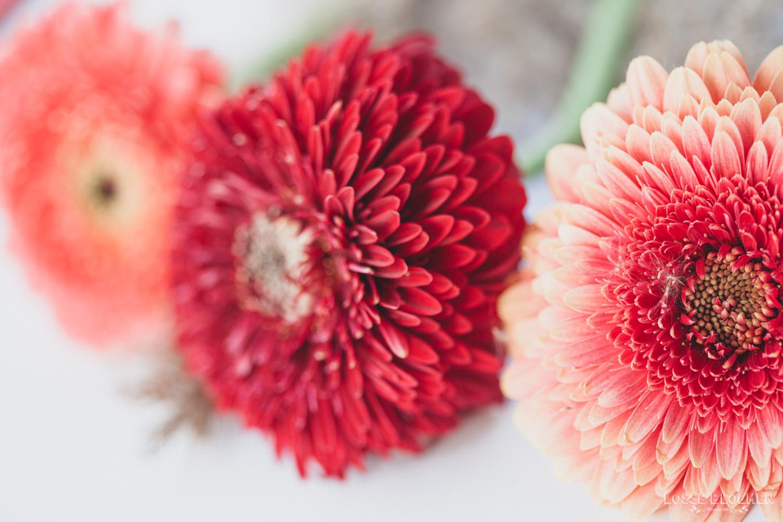 Goedkoop bloemen laten bezorgen 3 tips!