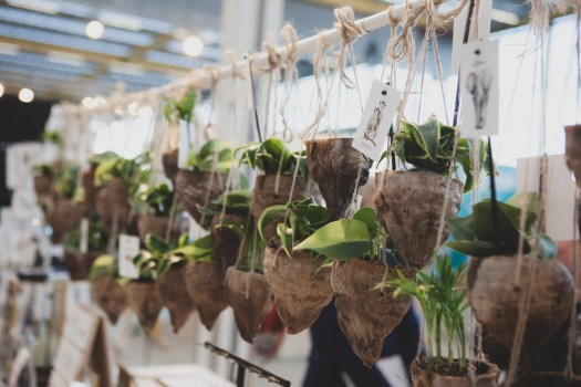 Kokosnoot plantenhangers op Showup 2019 trends op home and gift beurs blog