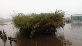 lago nokoué (Ganvié)
